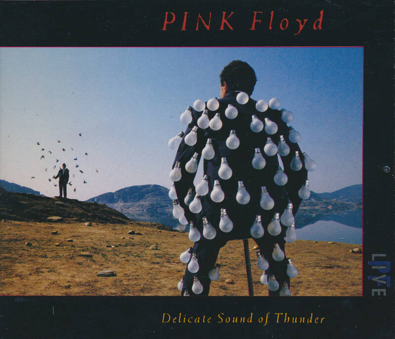 Pink Floyd - Delicate Sound Of Thunder [Holland] - 2CD