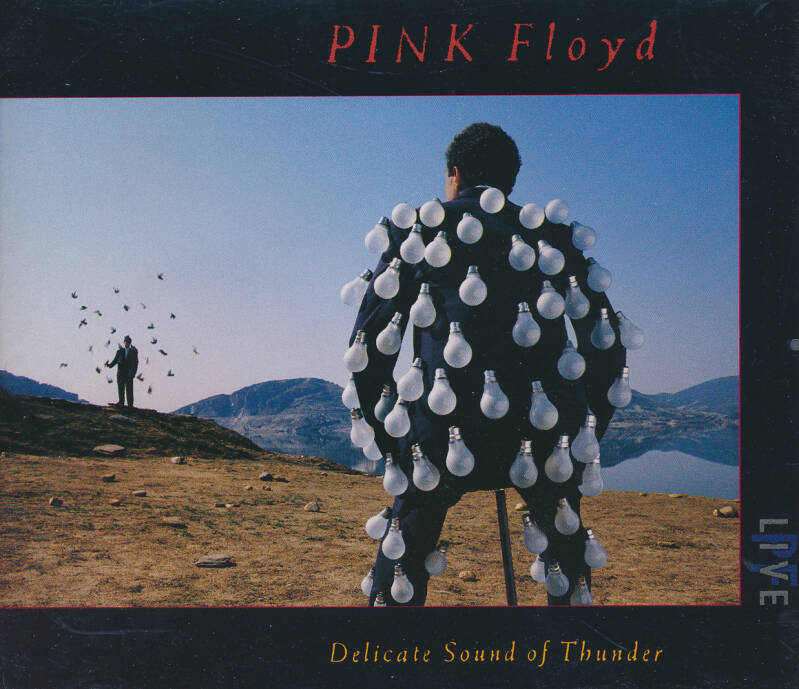 Pink Floyd - Delicate Sound Of Thunder [Italy] - 2CD