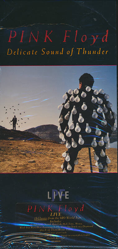Pink Floyd - Delicate Sound Of Thunder [USA, longbox] - 2CD