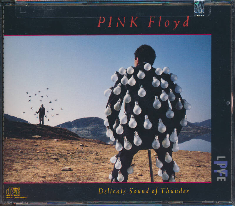 Pink Floyd - Delicate Sound Of Thunder [USA] - 2CD