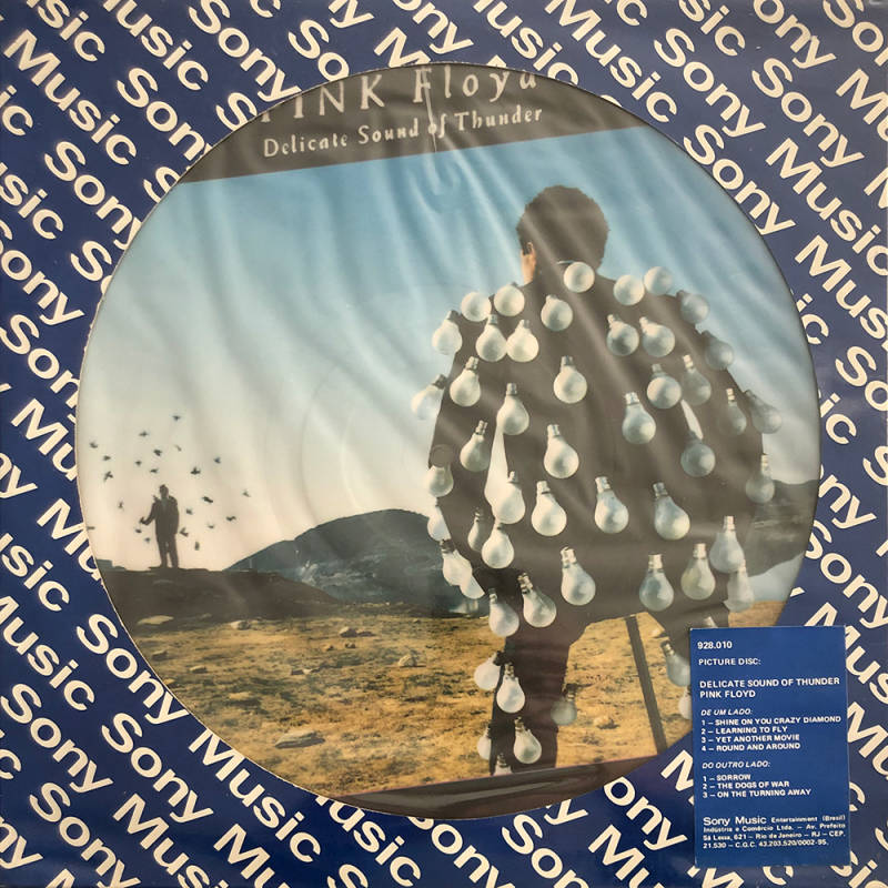 Pink Floyd - Delicate Sound Of Thunder [Brazil, picture disc, promo] - LP