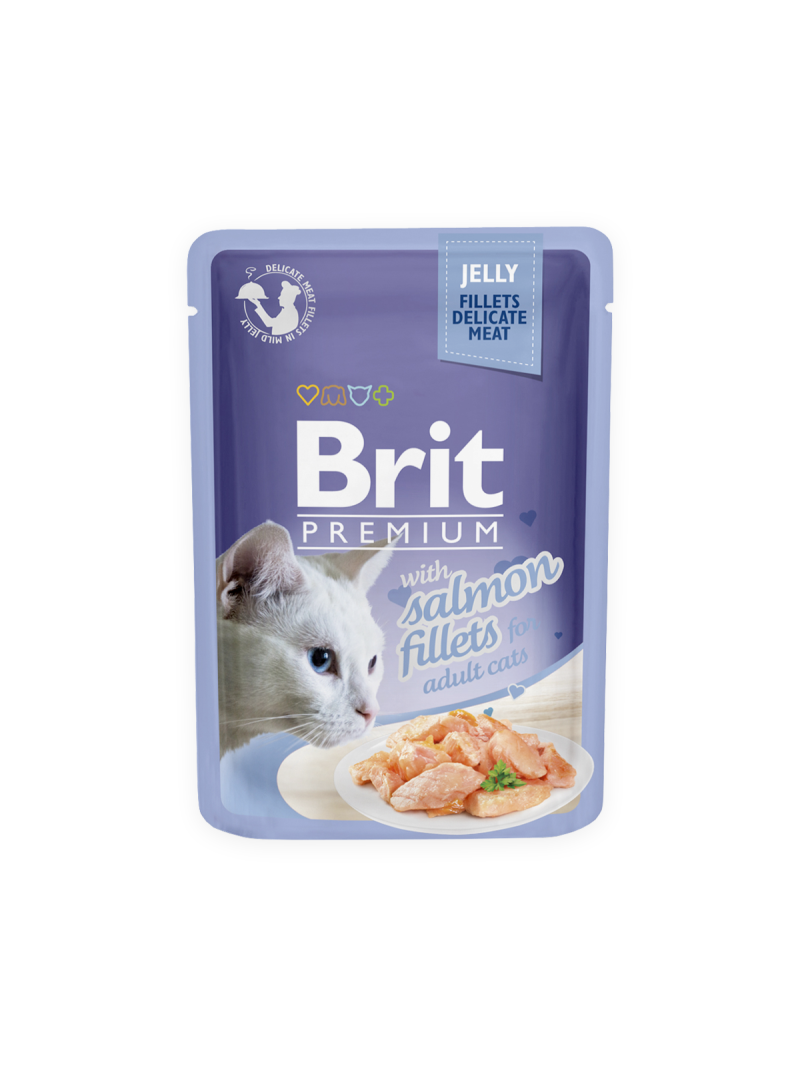 Brit premium salmon fillets in jelly pouche - adult