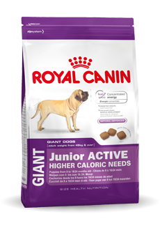 Royal Canin Giant Junior Active - 15 kg.