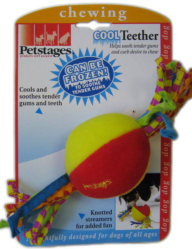 Puppy Cool Teether