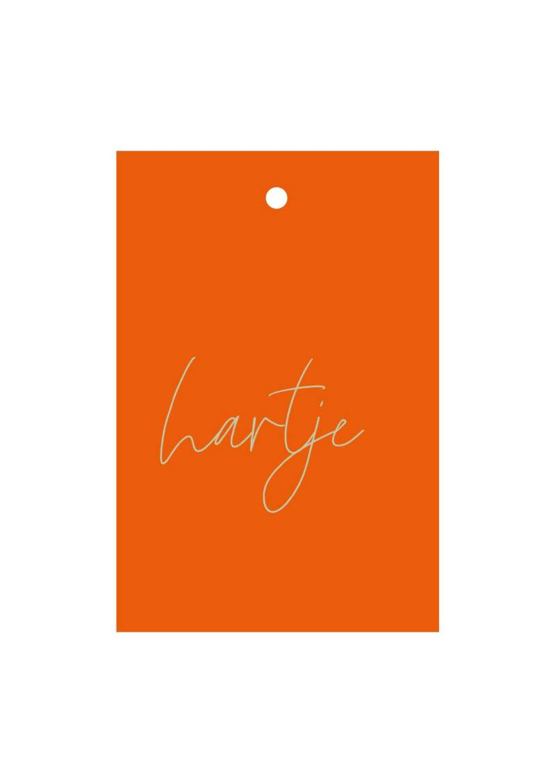 hartje / little