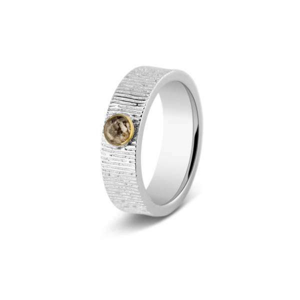 221 SY Silver/Gold