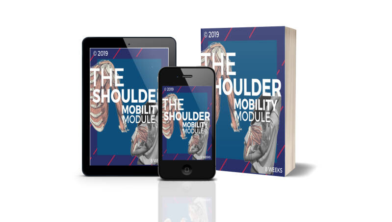 The shoulder mobility module