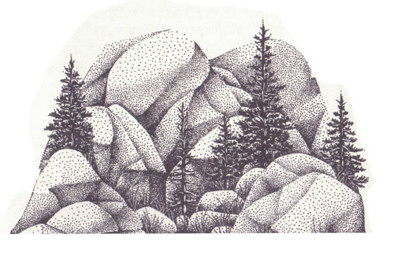 007G Boulders with trees lg