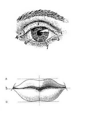 FAS G0110 Diagram lippen en diagram oog