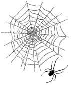 CP N387/24 Web and spider (2 stempels)