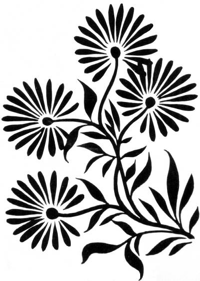 NS P10506 Ox-eye daisy silhouette