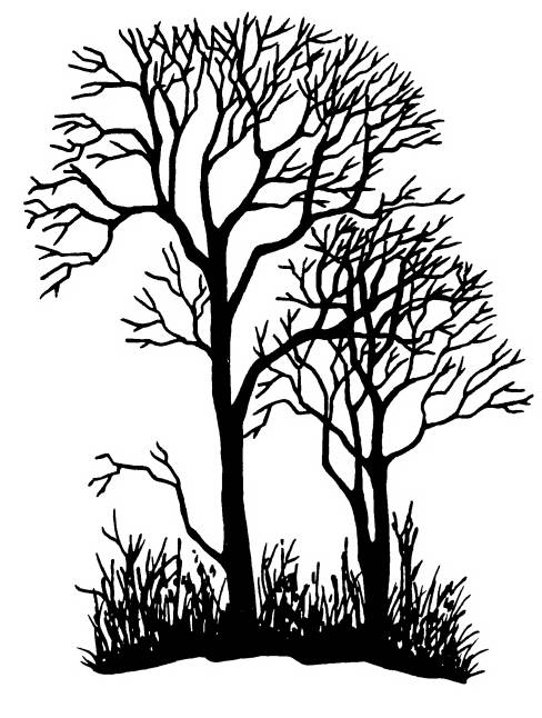 NS P7903 Tree silhouettes