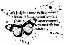 CP Q459/04 Butterfly & calligraphy
