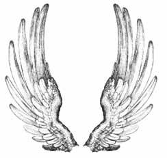 CP R503 Angel wings (2 stamps)