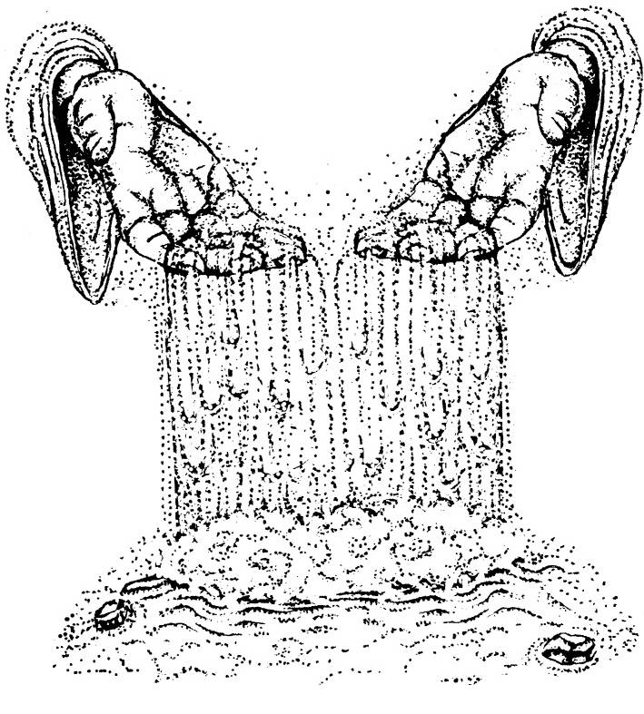 NS R8807 Water falling from hands