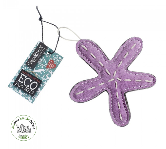 Stanley the Starfish - Eco Dog Toy