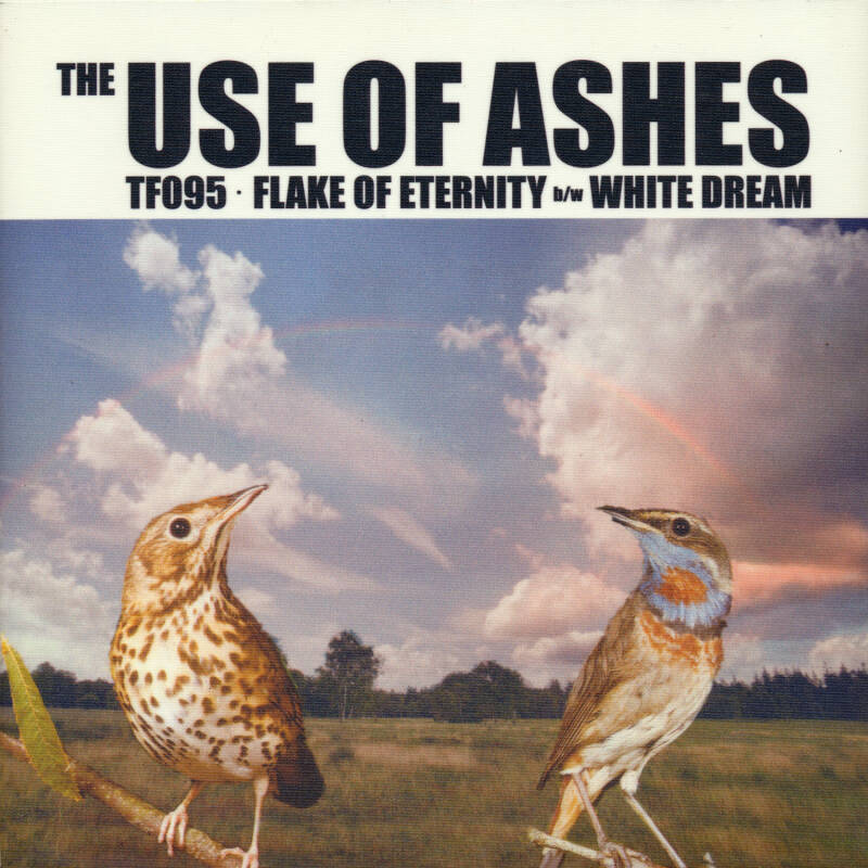 "TF095 // THE USE OF ASHES - FLAKE OF ETERNITY - SLEEVE H (7"")"