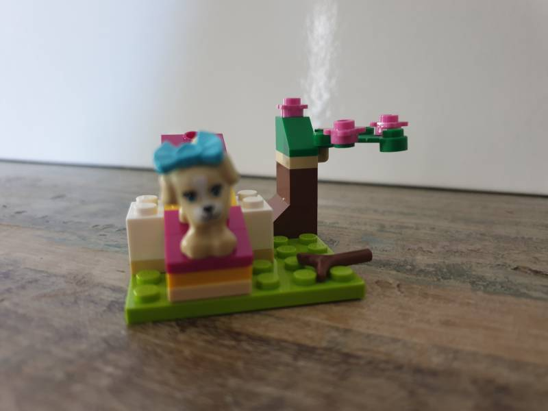 Lego Friends Puppy Training