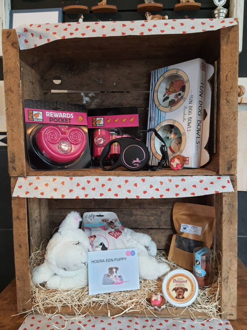 Puppy Gift Box for the little Princess