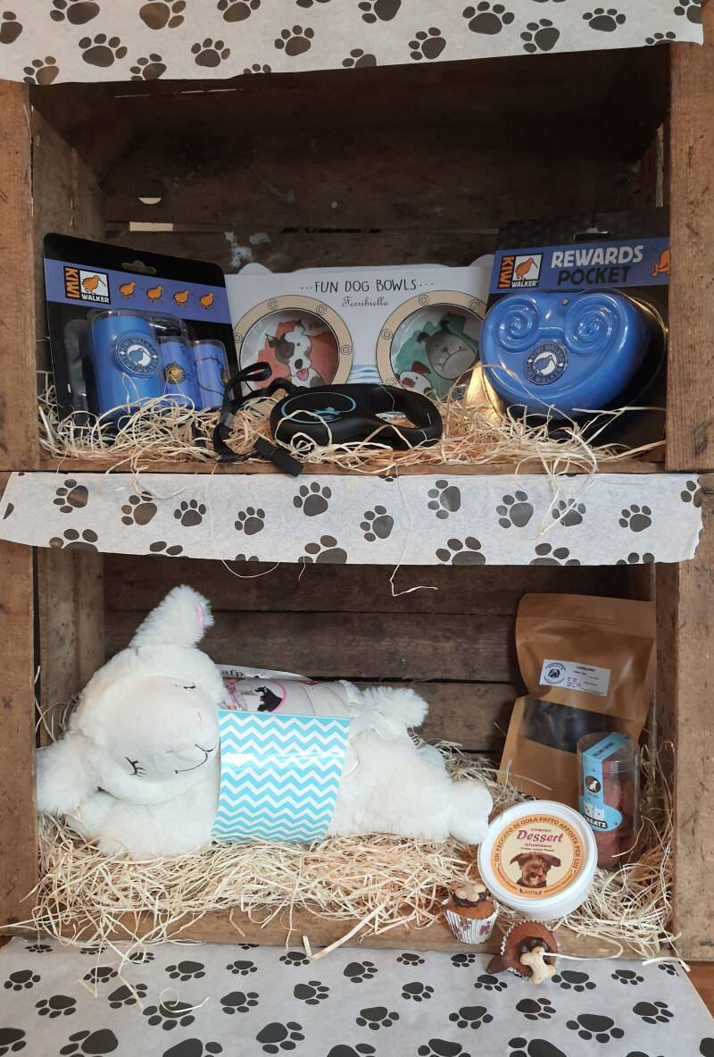 Puppy gift box for the little Prince