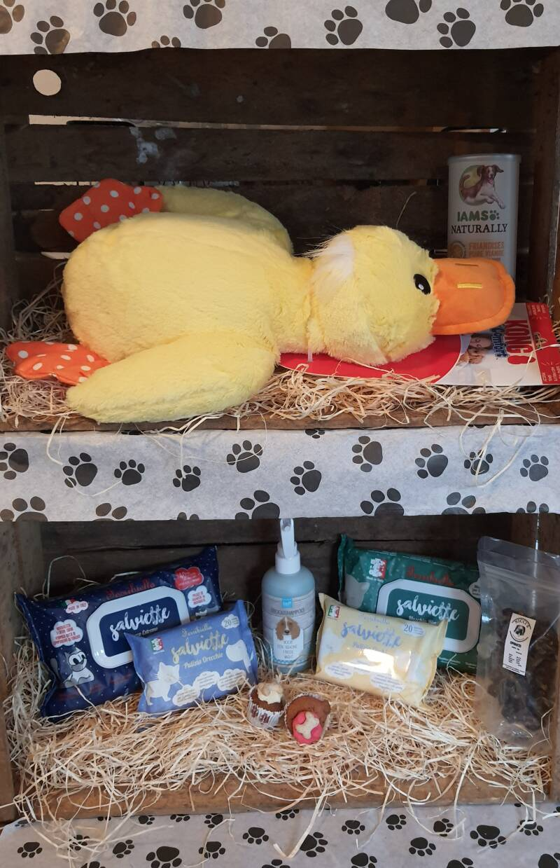 The Soft Yellow Duck Giftbox