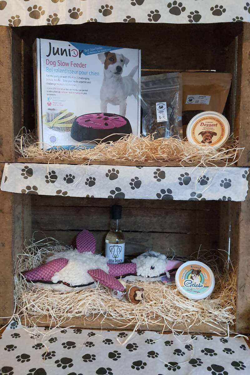 The Slow Feeder and Tasty Giftbox