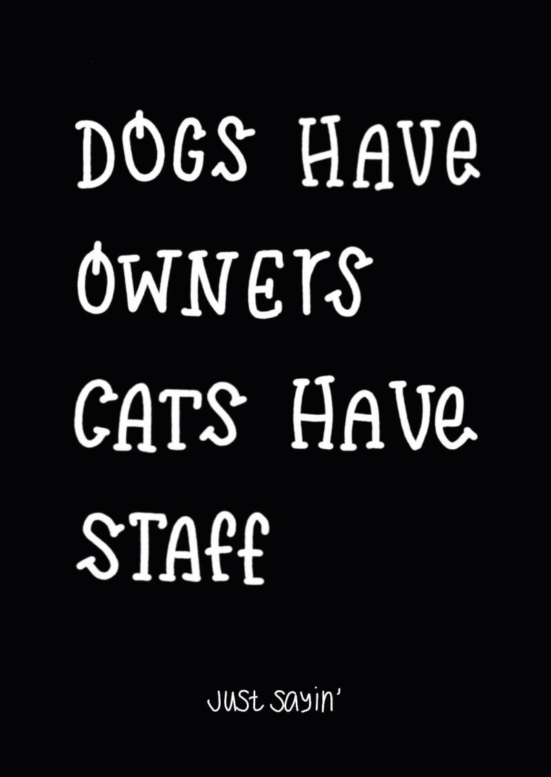 Kaart dogs have owners