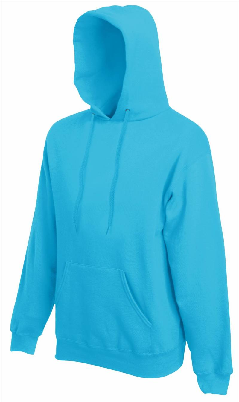 Classic Hooded Sweat (622080)