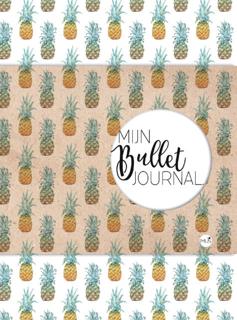 MUS Mijn Bullet Journal - Ananas