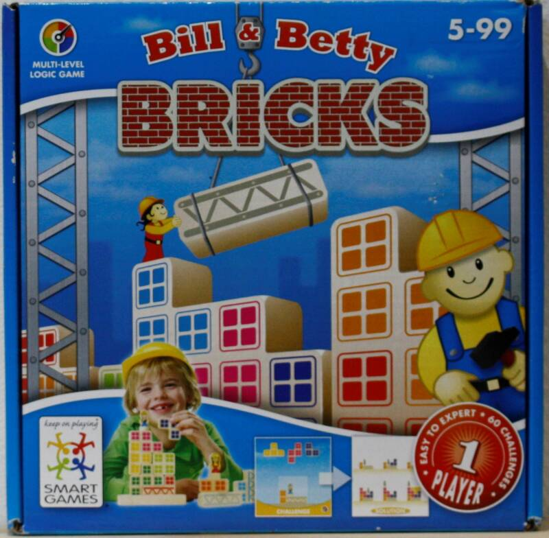 Smart games Bricks