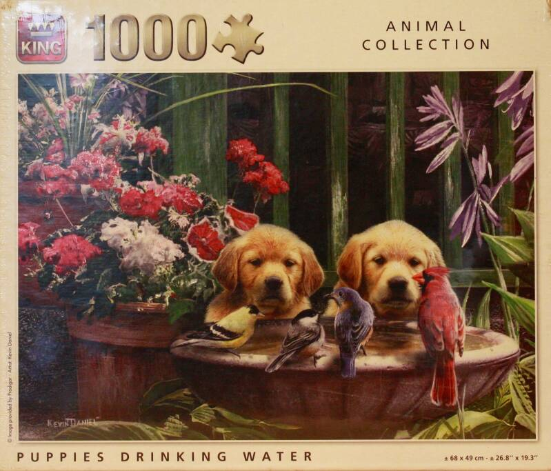 King Animal collection Puppies drinking water