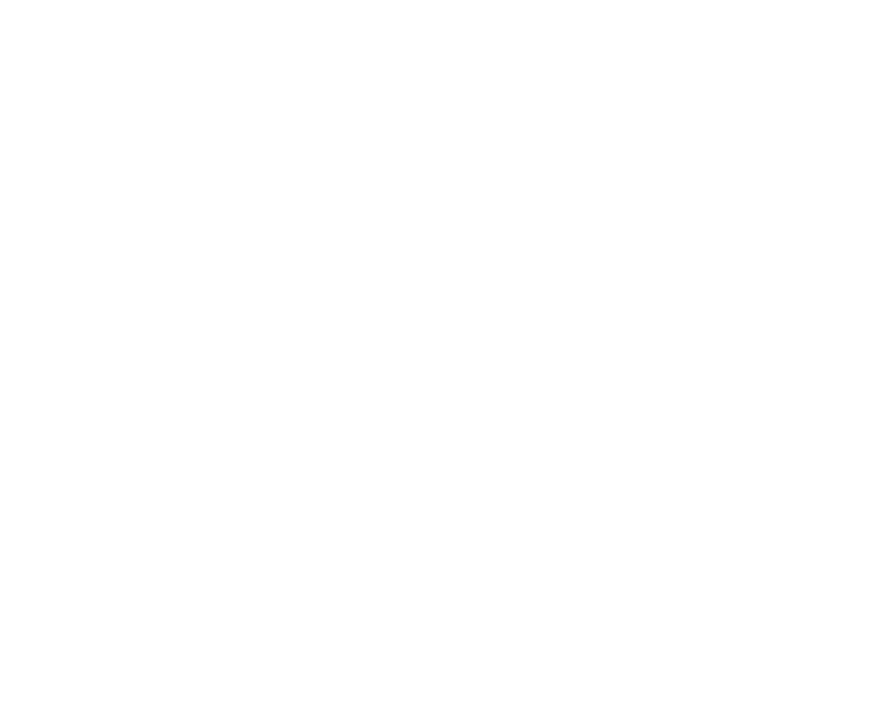 OPLEIDING : Classic lashes ( one by one)