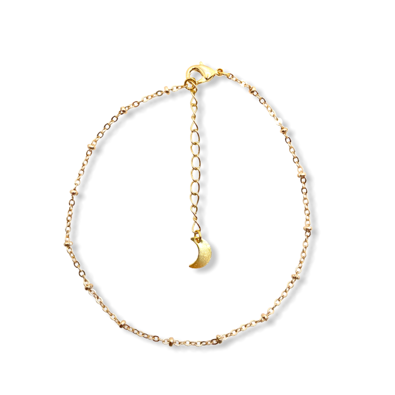 Thin Satellite Chain Anklet