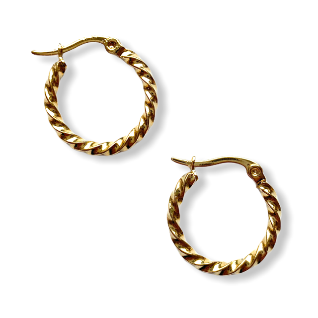 Small Twisted Hoop Earrings