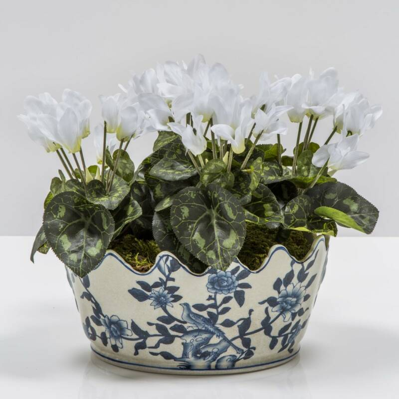Blue bowl with cyclamen
