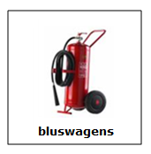 bluswagens-barger-compascuum.png