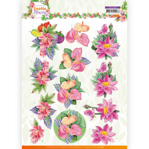 CD11690 - 3D cutting sheet - Jeanine's Art - Exotic Flowers - Pink Flowers