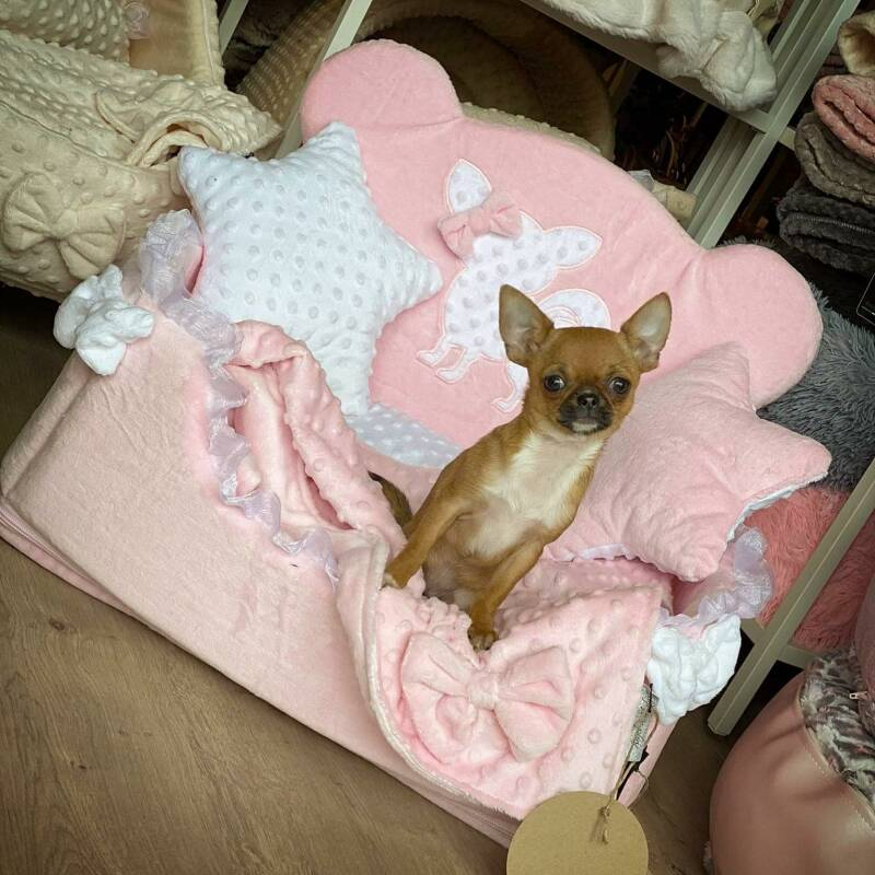 Cute Chichi Bed - Pink