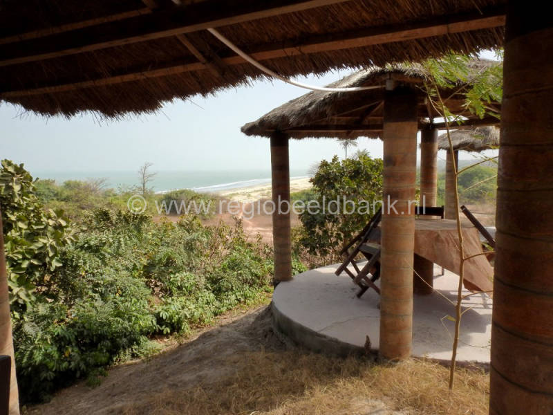 Tanji_Bird_Lodge_1176.jpg