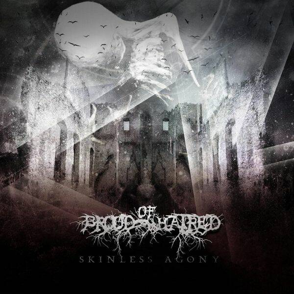 BROOD OF HATRED Skinless agony CD