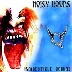 Noisy hours IndigestibleSounds CD