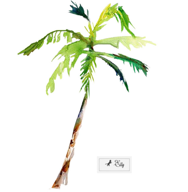 palmtreeTubeEllyD.png