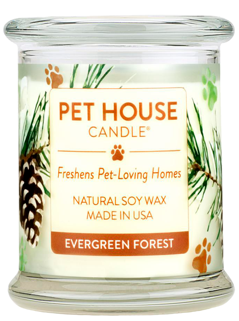 Pet House Candle | Evergreen Forest