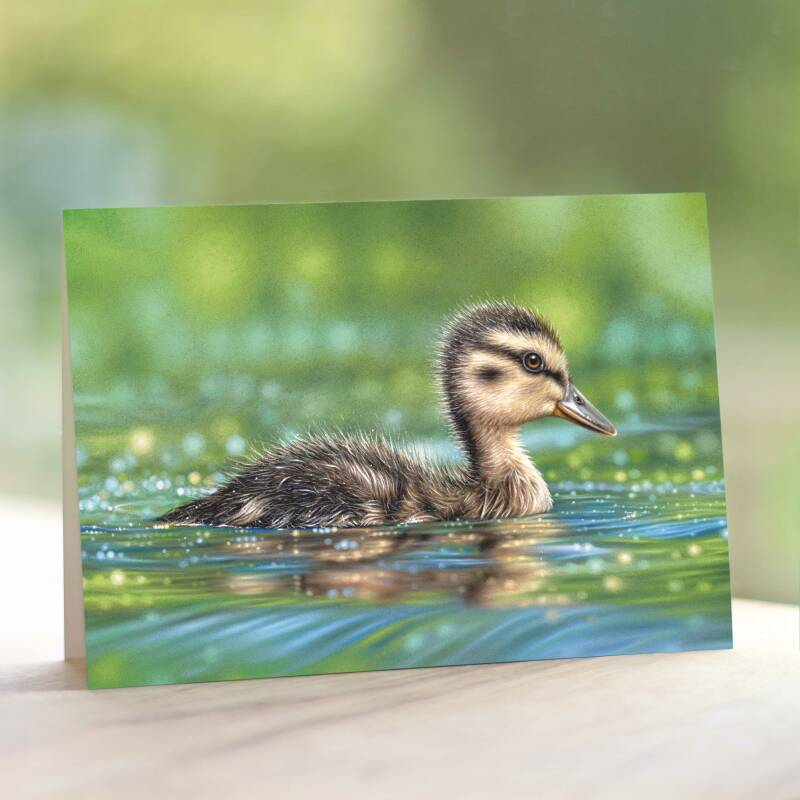 Healing Waters | Greeting Card
