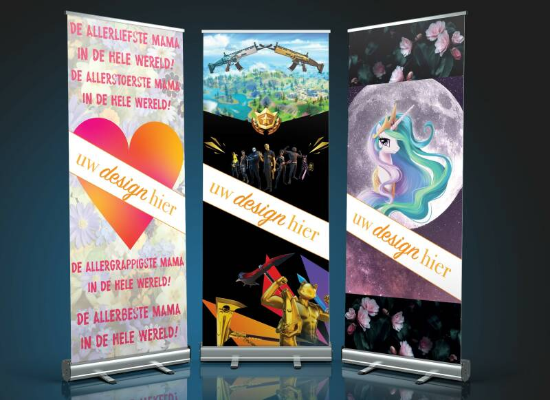 Budget Design Roll-Up Banners