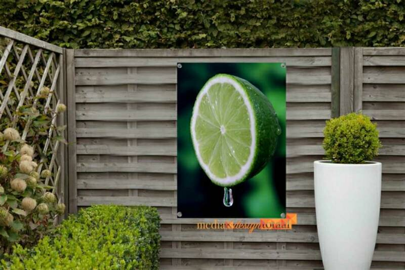 Tuinposter Lime