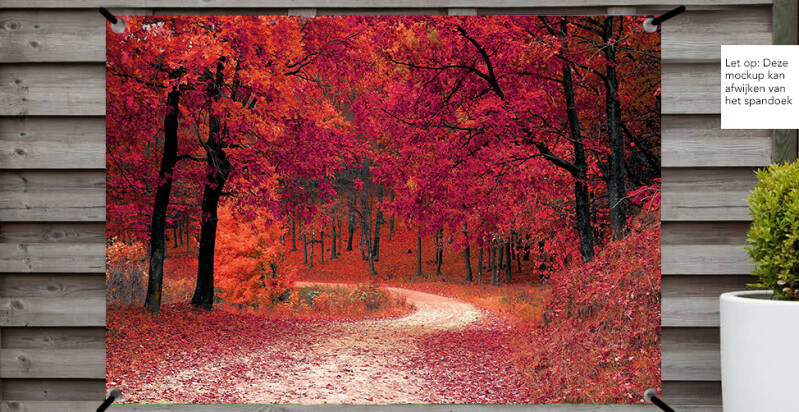 Tuinposter Rood Bos