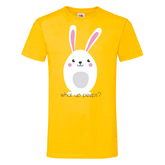 Paasshirts | What up peeps