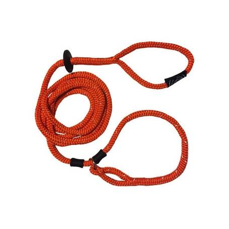 Harness & Lead in één