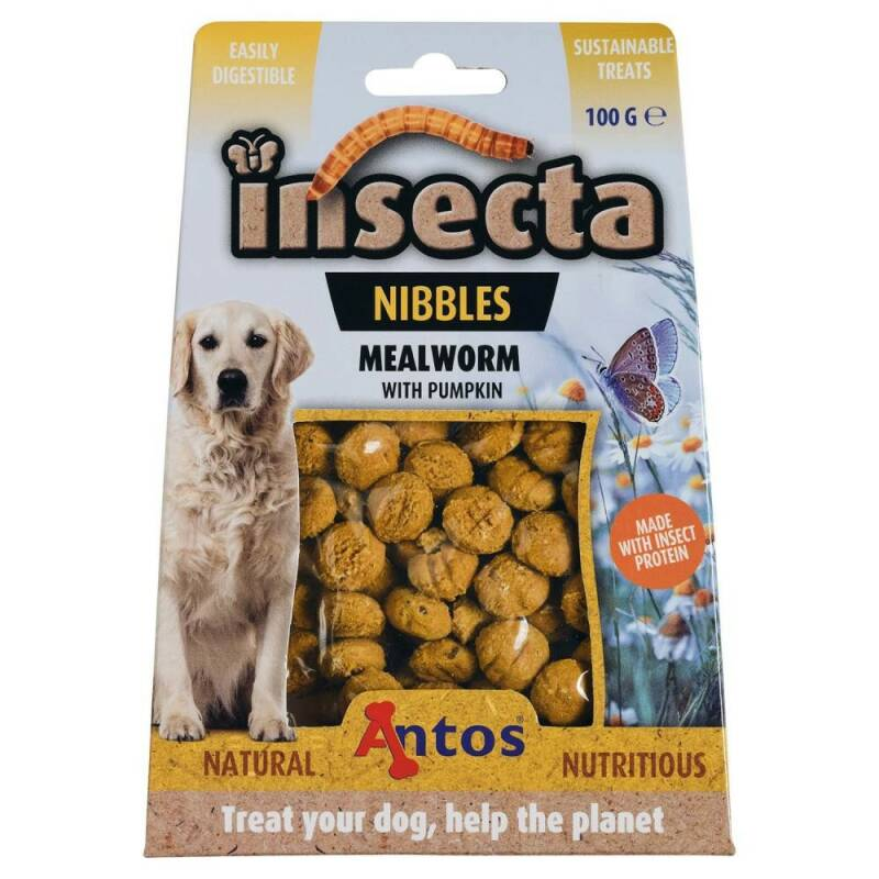 Insecta Nibbels Meelworm & pompoen 100gr